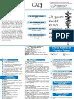 triptico academicas.pdf