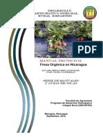 pdf  frutillas