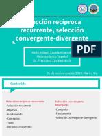 4. Keila Abigail Zavala_Reciproca R, Convergente Divergente