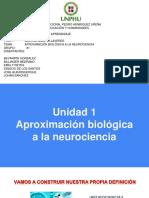 Neurociencia 7.pptx