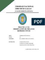 PRÁCTICA N°01 DE EMBRIO..docx
