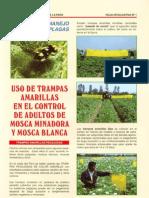 TRAMPAS AMARILLAS