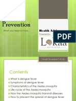 Dengue Prevention.pdf