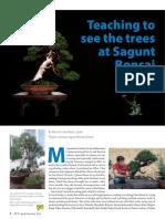 Bsam 2019 Q2-Sagunt Bonsai School-V1