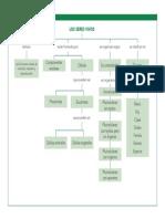 los sere vivos  facil.pdf