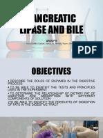 Pancreatic Lipase and Bile
