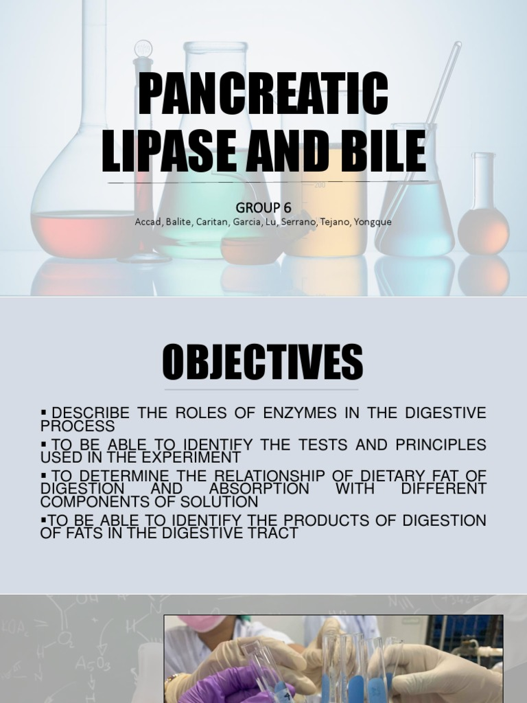 Role of pancreatic lipase in fat digestion