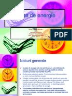 Surse de Energie (1)