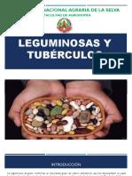 CLASE 3-Leguminosas y Tubérculos