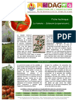 Tomate Ft Culture SDRdag v2016