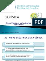 Bases Físicas de Los Fenómenos Bioeléctricos18
