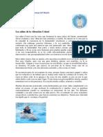 los-ninos-de-vibracion-cristal.pdf