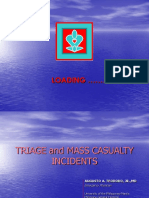 TRIAGE and MCI 083104.ppt