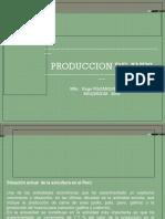 Producion de Aves