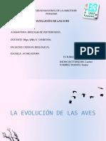La-Evolucion-de-Las-Aves.pptx