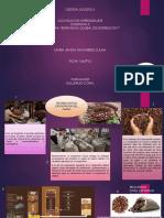 Infografia Estrategia Global de Distribucion
