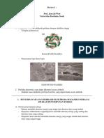 Review Kuliah Umum 1 - Adi Sugiarto