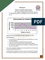 hidrograma informe.docx