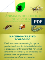 animalesdelhuertodemicolegio-110314123046-phpapp01