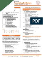 [NEURO] 4.1 Ascending Pathways - Dr. De Roxas.pdf