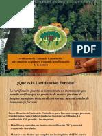 Cadena de Custodia Forestal FSC