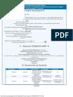 Formato Snip - 15 Informe de Consistencia Del Estudio Detallado Del Pip Viable