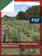 trabajo MIE AGROSAVIA UCHUVA.pdf
