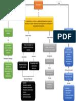 Mapa Conceptual Constitucion Civica (1)