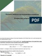 Factores Bioticos, Producción Primaria