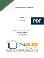 Unidad 1 Tarea 1, Elementos Teoricos de La Etnopsicologia