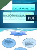 Escala de Norton