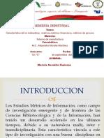 LOGISTICA  DE SUMINISTROS AFM