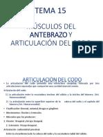 TEMA 15          MÚSCULOS DEL ANTEBRAZO Y ARTICULACIÓN DEL CODO.pdf