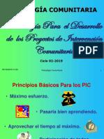 Metodologia Para Pic Ciclo 02-2019