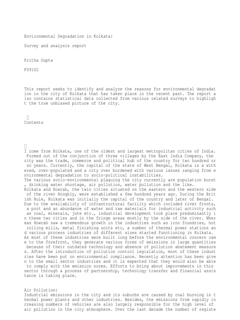 save the environment essay