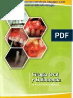 Cirugia Oral Y Endodoncia Raul Botetano.pdf