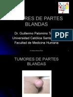 11 Tumoresdepartesblandas1 100718210323 Phpapp01