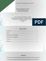Evidencia 6 Infografia Proceso Aduanero en Colombia
