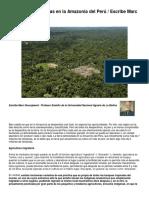 Tierra sobreexplotada de la amazonia