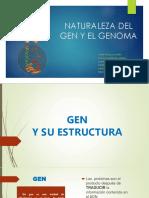 Naturaleza de Gen y Genoma