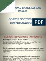 Costos Sectoriales Agricolas