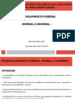 desenvolvimento Puberal