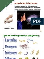 enfermedades microorganismos.pdf