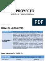 proyecto - gestion..pptx