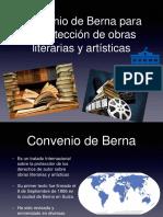 Berna derecho propiedad intelectual