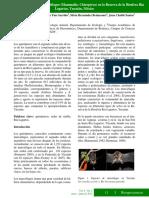 quiropteros Selem-Salas 2010 .pdf