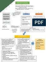 MICROFINAnzas evidence 1 tabla.docx