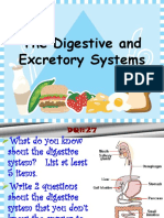 Digestive and Excretory Systems ppt