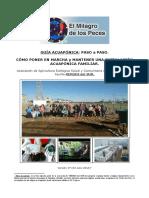 GUIA_ACUAPONICA_PASO_a_PASO.pdf