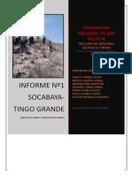 INFORME EL ORIGEN DEL LEMUR.docx